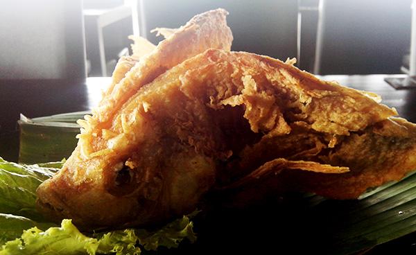 ikan talapia rumah makan cibiuk
