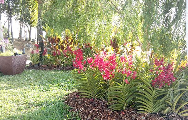 taman bunga floria putrajaya 2013