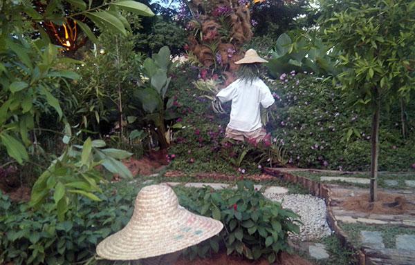 taman bunga putrajaya malaysia