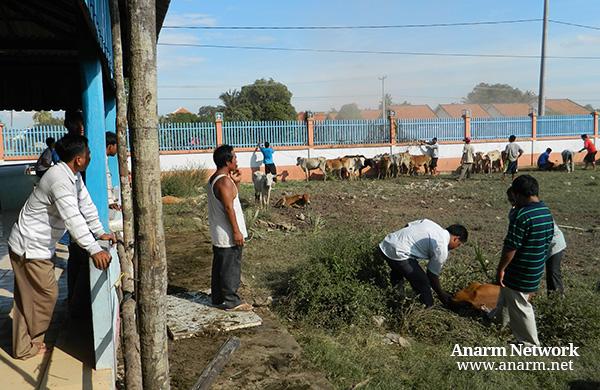 Tempat korban lembu di Kemboja